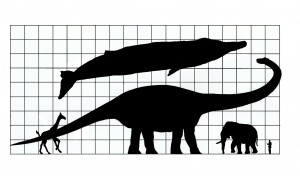 TheAgeofDinosaurs