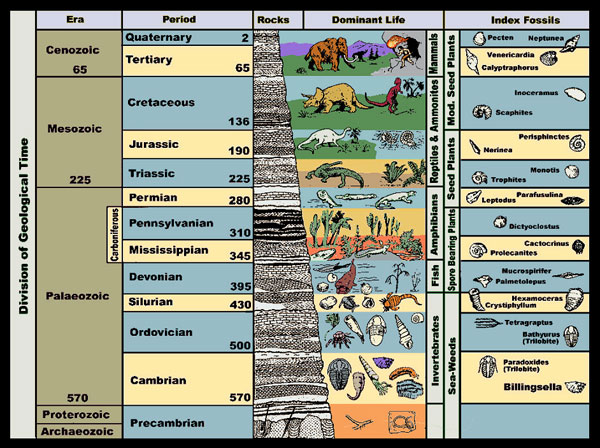 geologic-column
