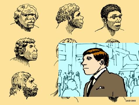 Human Ancestors - Modern
